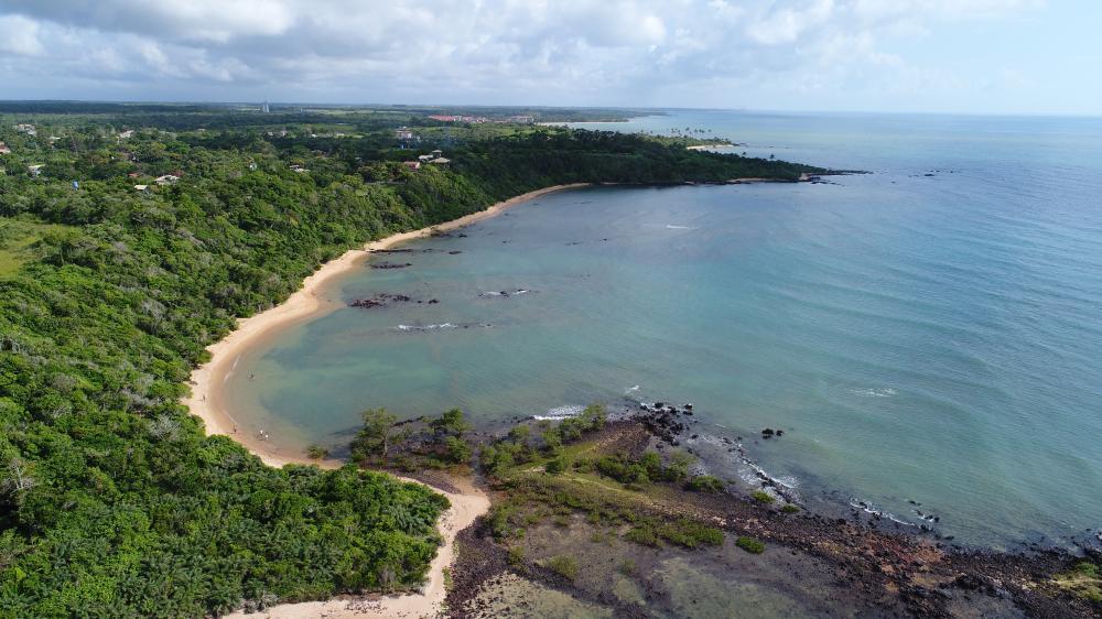 Aracruz inicia cadastro de voluntários para ajudar na limpeza das praias caso óleo chegue ao litoral