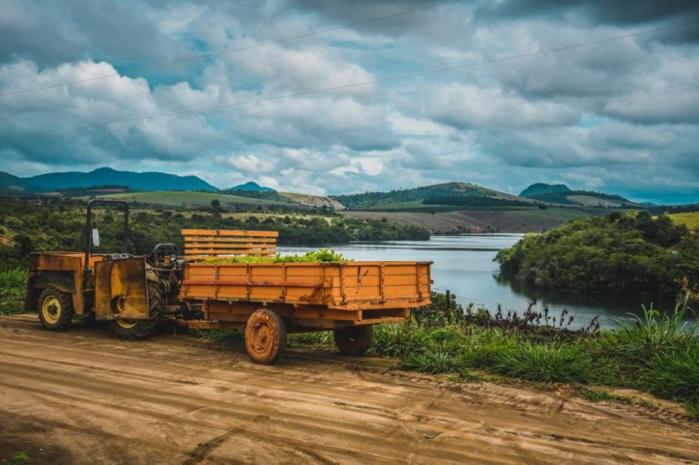 Produtores iniciam plantio de mudas de goiaba do primeiro polo de fruticultura de Linhares