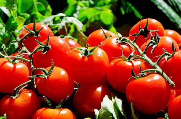 Tomate tem nova alta e diferença de preço chega a R$ 2 nos supermercados