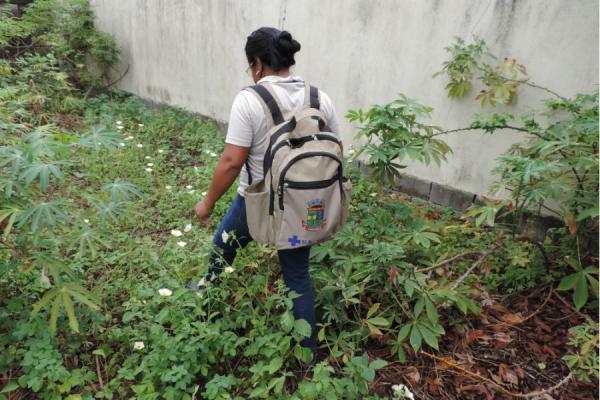 Mutirão reforça combate à dengue no Pontal do Ipiranga nesse Verão